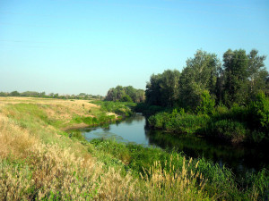 Река Чир. Фото Татьяны Александриной.