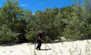 Поисковые работы на острове Дурной 07.06.2015 года.